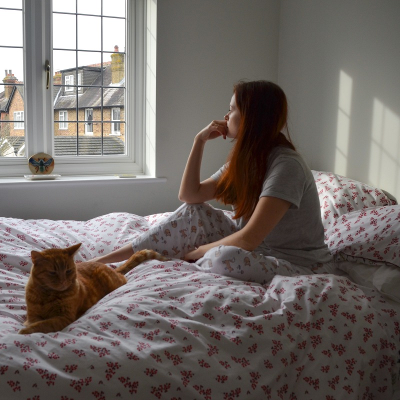 Person with long red hair in pyjamas sat on a bed with a red cat, staring out the window at other houses. The sun casts a shadow of the window from on the white wall behind the person.