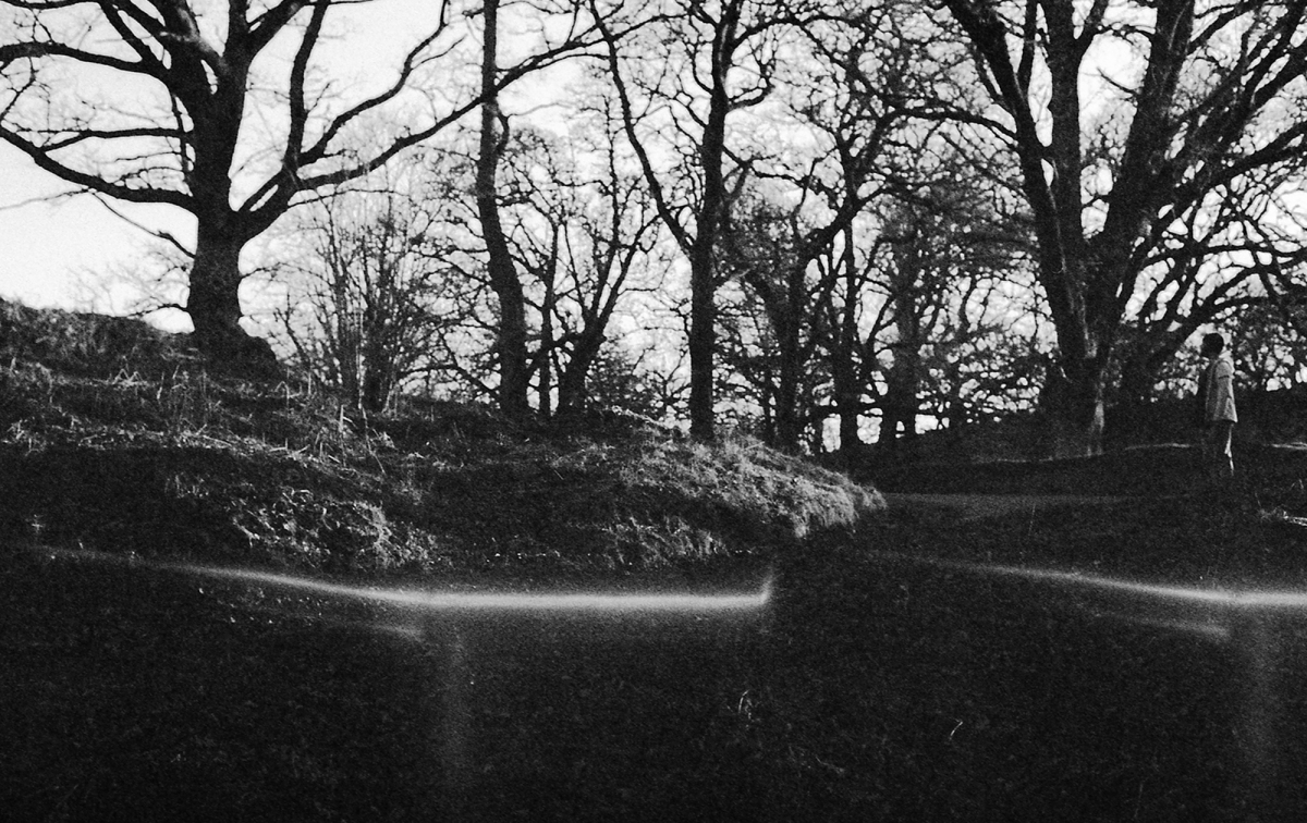 Black and white image of trees without leaves, with a figure standing to the right looking across.